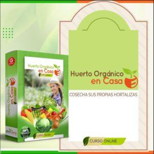 Huerto orgánico en casa